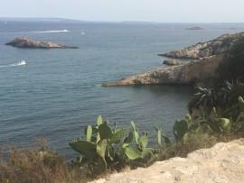 Grosser Gegensatz zum Partyleben: immer wieder wird man mit dem Meer und der Natur konfrontiert.